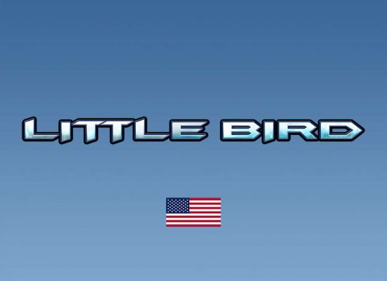 DFriel-Little-Bird-LogoDesign-1