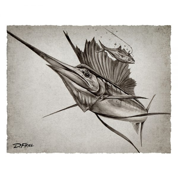 Black Ink: Goggle Eye Sailfish by D.Friel - Connected by Water