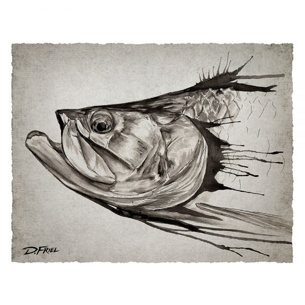 Black Ink: Tarpon by D.Friel - Connected by Water