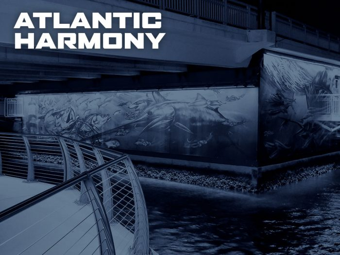 Atlantic Harmony by D.Friel - Connected by Water